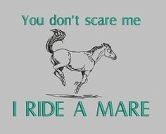 You Don't Scare Me I Ride a Mare Horse T-Shirt Tee T Shirt Choose Your Shirt and Thread Color