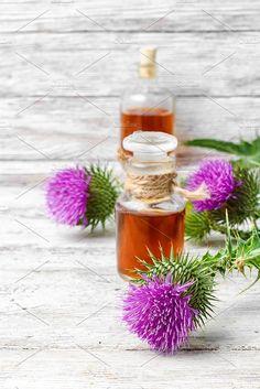 Elixir of medicinal herbs by MLunov on @creativemarket