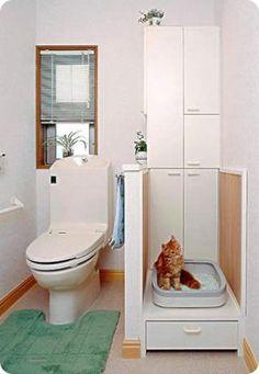 Casas diseñadas en función e la relación con los gatos - Houses designed with cats in mind