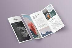 LUMINA Trifold Brochure #character#paragraph#typeset#styles Brochure Indesign, Template Brochure, Corporate Brochure Design, Brochure Layout, Brochure Trifold, Brochures, Brochure Examples, Flugblatt Design, Flyer Design