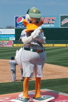 Long island ducks coupons