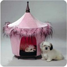 Knock-Knock, Can I come in? Posh & Pink Bed - Beds, Blankets & Furniture - Furniture Style Beds Posh Puppy Boutique
