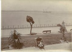 1915c Esplanade, Durban News South Africa, Durban South Africa, Sun City, Pretoria, African History, Historical Society, Good Old, Historical Photos, East Coast