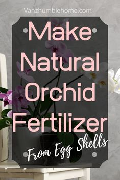 How to make your own natural, eco-friendly, homemade orchid food with egg shells. Calcium and potassium supplement for plants. How To Make Diy Projects, Diy Craft Projects, Project Ideas, Orchid Food, Orchid Fertilizer, Garbage Recycling, Vanz, Make Your Own, Make It Yourself