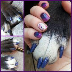 Dog nails, Jamberry nail wraps, dog paw