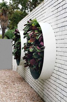 Once you've designed your garden, pick the plants that you want to grow during each season. There's no better solution than to bring a vertical garden. While arranging a vertical garden… Plantador Vertical, Vertical Garden Design, Garden Wall Designs, Vertical Planter, Garden Arbor, Garden Landscaping, Garden Edging, Vertikal Garden, Garden Ideas To Make