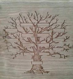 L 39 arbre g n alogique exercice acheter arbre - Malvorlage stammbaum ...
