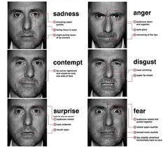 Lie To Me and Microexpressions