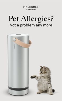 Molekule completely destroys airborne allergens, mold, dust, bacteria, viruses and gaseous chemicals and makes the air you breathe healthy again.