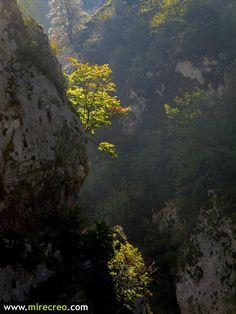Ruta por el desfiladero de las Xanas, Villanueva, Santo Adriano, Asturias  #senderismo   #hiking   #mirecreo   #turismo   #tourism   #xanas   #villanueva   #asturias   #santoadriano   #desfiladeros   #excursiones   #trips