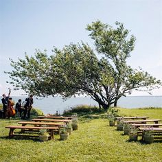I like the benches here instead of chairs. Even logs would be cool. Are there any locations at GOTG like this? Secret Garden Parties, Touch Of Gray, Outdoor Furniture Sets, Outdoor Decor, Cherry Tree, Ceremony Decorations, View Photos, The Hamptons, Wedding Inspiration