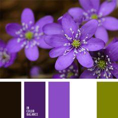 blanco y violeta, color malva, color malva con tono violeta, colores para la decoración, paletas de colores para decoración, paletas para un diseñador, selección de colores, tonos violetas, violeta y verde.