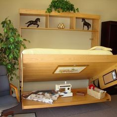 Wallbeds Contemporary Oak Murphy Bed