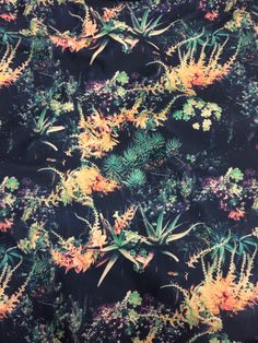 Succulent print on a top shop bathing suit...love this in so many ways.