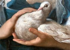 Girl with the Dove (detail), Jean-Baptiste Greuze, (1725 - 1805)
