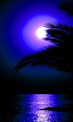 White Sandy Beaches Stunning Scenery Bright Blue Sky Palm Trees Everything You Want Luxury Vacation Hammock Go for a Swim See the Fish Take in the View Beautiful Moon, Beautiful World, Beautiful Places, Moon Pictures, Pretty Pictures, Natur Wallpaper, Shoot The Moon, Blue Moon, Amazing Nature