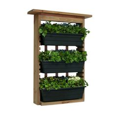 Algreen 6 in. Wood Garden View Vertical Garden with 3 Planters-34002 - The Home Depot