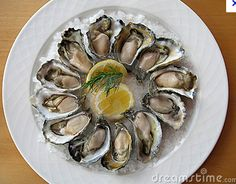 Oysters favorite food In the world
