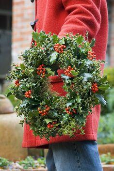 Homemade Christmas: Festive wreath made from holly (Ilex aquilfolium), ivy and variegated box (Buxus sempervirens 'Argenteovariegata'). Photo by Jason Ingram. #decor #wreath #holly #christmas