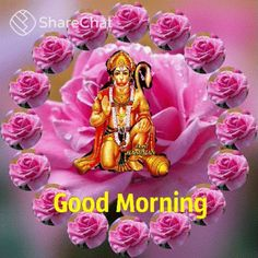 Good Morning Rose Gif, Good Morning Gift, Good Morning Friends Images, Good Morning Wishes Quotes, Good Morning Beautiful Pictures, Good Morning Happy Sunday, Good Morning Beautiful Images, Good Morning Prayer, Good Morning Picture