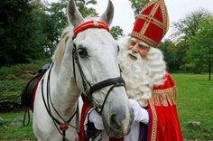 Sinterklaas met zijn witte paard Amerigo.