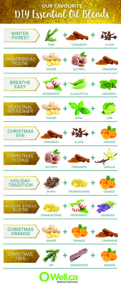 Check out our favourite holiday diffuser blends over on the Well Blog. Essential oils