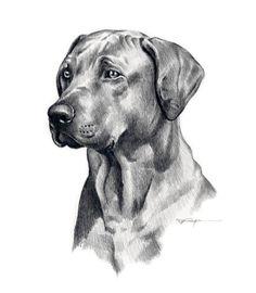 hund-bleistift