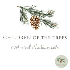 Children of the Trees is an online baby and children's decor store. We stock handmade New Zealand products along with some products sourced internationally. Shared Bedrooms, Baby Online, Custom Paint, Educational Toys, Girls Bedroom, Wooden Toys, Your Child, Place Card Holders, Children