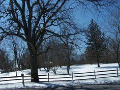 Illinois winter