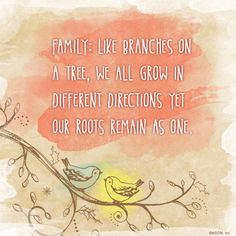 Family Like Branches On A Tree We All Grow In Different Directions Yet Our Roots Remain As One