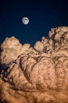 This photo shows subordination by making the moon a secondary subject to the…                                                                                                                                                                                 More