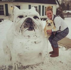 funny-ice-sculpture-snow-dog
