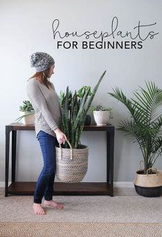Flower Gardening For Beginners Houseplants for Beginners! I feel like because I over love, I over water :( - Houseplants add texture and color and go with any style of home decor. Use these tips to learn the basic of how to keep houseplants alive! Easy Home Decor, Home Decor Styles, Home Decor Accessories, Decorative Accessories, Plantas Indoor, Decoration Plante, Green Decoration, Inside Plants, Gardening For Beginners