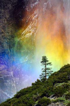 #Yosemite #Falls #Rainbow
