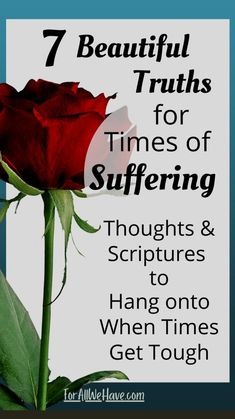 Christian Living, Christian Life, Hope Of The World, Facing Fear, Fear Of Flying, Bride Of Christ, Mental And Emotional Health, Praise God, Anxiety Relief