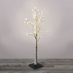 45 Ft Prelit Birch Tree 48 Warm White LEDs IndoorOutdoor Use Plugin Timer Included UL Listed ** Check out this great product.
