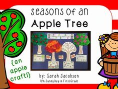 Seasons of an Apple Tree!!