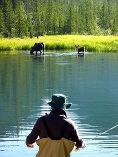 Just another day fishing in Banff Alberta Canada. Just another day fishing in Banff Alberta Canada. Fishing Videos, Fishing Guide, Banff Alberta, Alberta Canada, Destin Fishing, Fishing Photography, Gone Fishing, Fishing Hole, Le Havre