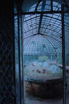 dreamy glasshouse / greenhouse