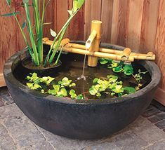 Container water garden kits offer an instant patio water garden... just add plants.