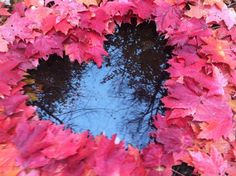 Find images and videos about love, nature and heart on We Heart It - the app to get lost in what you love. Heart Pictures, Heart Images, Nature Pictures, Dont Break My Heart, I Love Heart, Heart In Nature, Heart Art, Heart Wallpaper, Fire Heart
