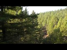 Hunting Land for Sale in Montana