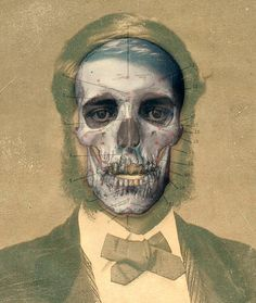 Fascinating Interview with Victorian Skull artist Franz Marc, Skull Head, Skull Art, Memento Mori, Crane, Human Skull, Portrait Illustration, Skull And Bones, Whimsical Art
