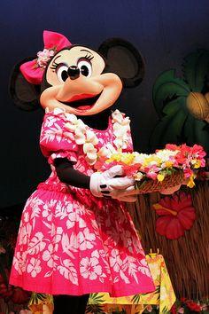 Minnie Lilo Luau and Fun