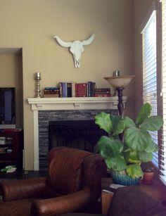 steer head and vintage books on the mantel