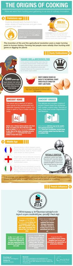 infographic: the origins of cooking