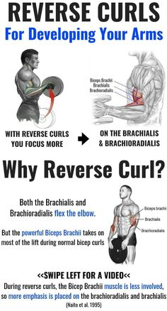 When did you last do a biceps curl? But when did you last do a reverse biceps cu. When did you last do a biceps curl? But when did you last do a reverse biceps curl? That's the variation in which, instead of curling a weight up with wrists Big Biceps Workout, Arm Workout Men, Forearm Workout, Gym Workout Chart, Biceps And Triceps, Dumbbell Workout, Biceps Curl, Shoulder And Bicep Workout, Kettlebell