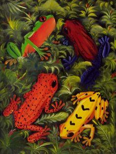 Rainforest Animal Painting Frog Golden Poison Dart Flower Panama 12.63373