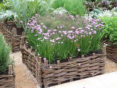 Chives and bronze fennel - pretty combination, especially with the basket weave edging.