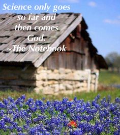 """My favorite quote from The Notebook - """"Science only goes so far and then comes God."""""""
